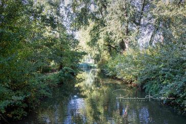 On the riverside of the Dommel