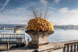 At the Lake Geneva