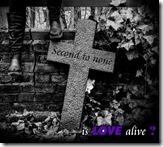 ILA-Second to none, Frontcover